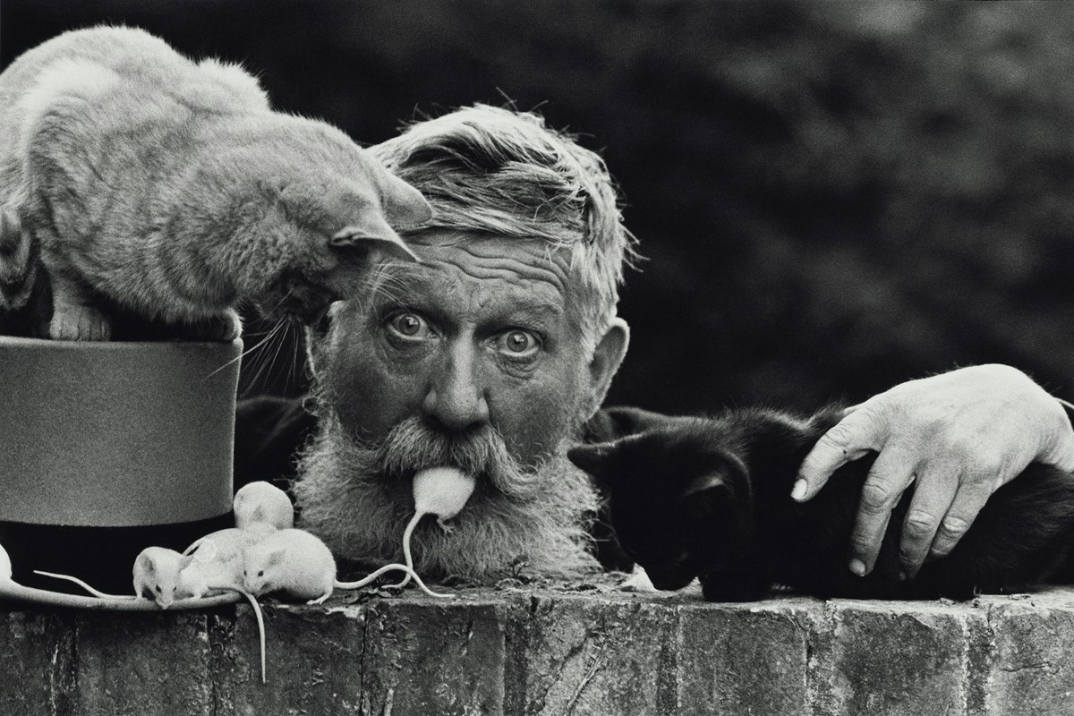 You Can Now See Don McCullin's Most Enduring Photographs Online