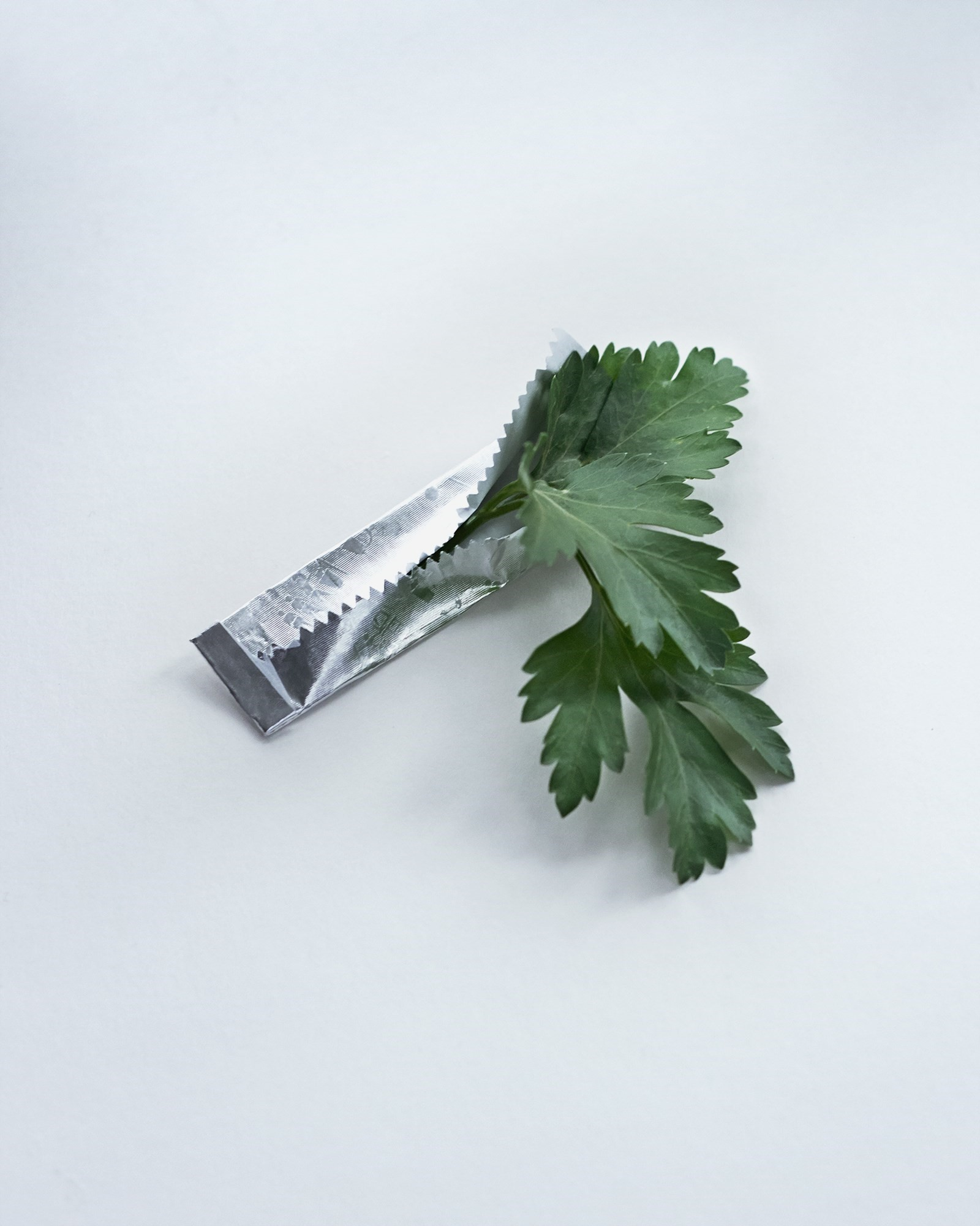 Another_Guide_To_Parsley