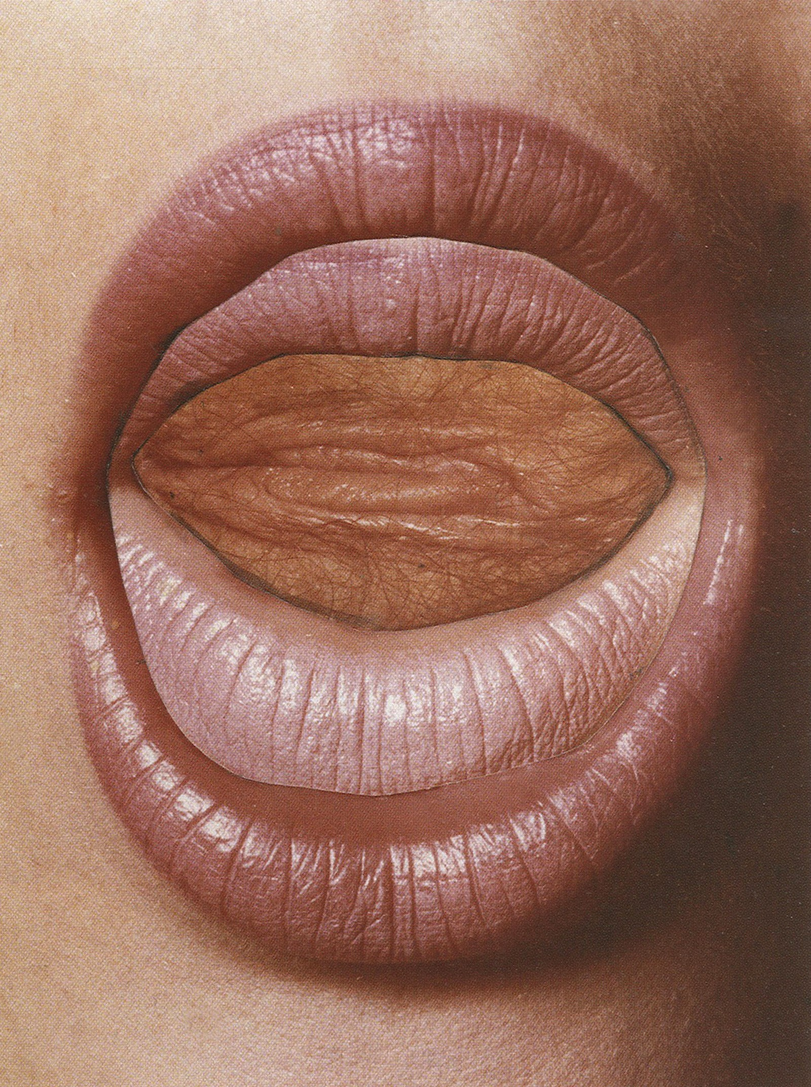 Read My Lips_1973_Penrose collection