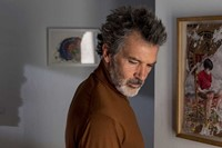 The Skin I Live In Pedro Almodóvar Art Pain and Glory
