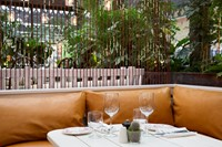 The garden at Blixen, London