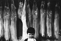 8_Arlene-Gottfried_Butchers-Boy_1975_copyright-Arl