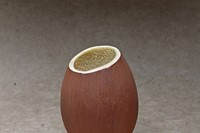 Coconut Easter Egg by The Chocolate Society