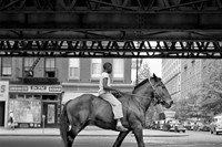 African-American Man on Horse, NYC