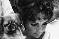 Elizabeth Taylor and her Pekingese take a little time out du