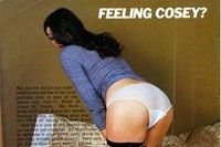 2.-«-Feeling-Cosey-»,-Fiesta,-Vol.-10-No.-7,-1976