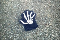 Little Book of Lost Gloves
