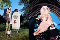 gucci-three-little-pigs-collection-01