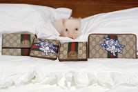 gucci-three-little-pigs-collection-08