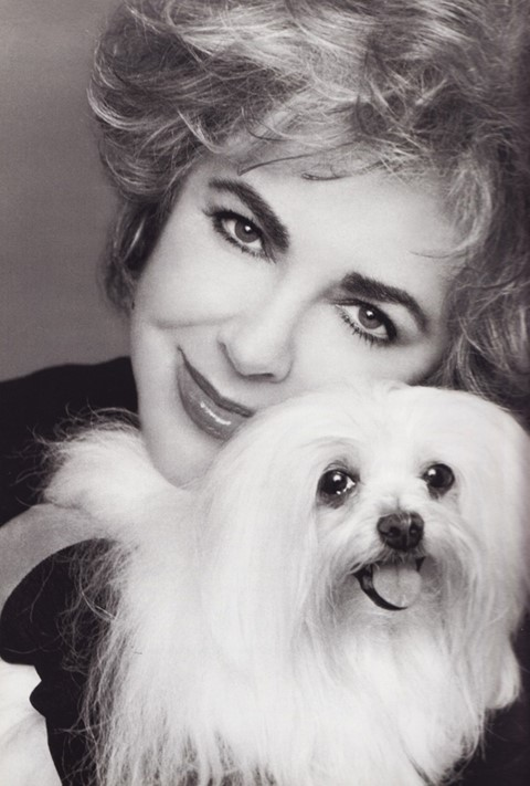 Elizabeth Taylor and Sugar