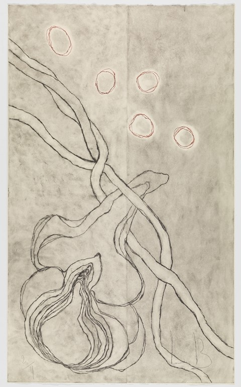 Louise Bourgeois, Love and Kisses 2007