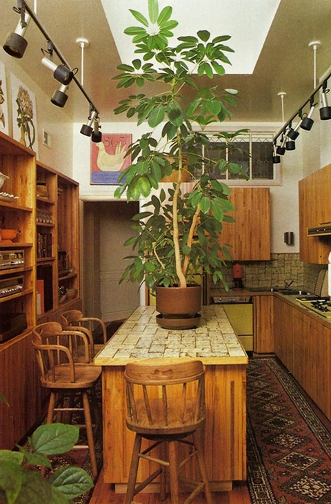 From Decorating With Plants, 1980