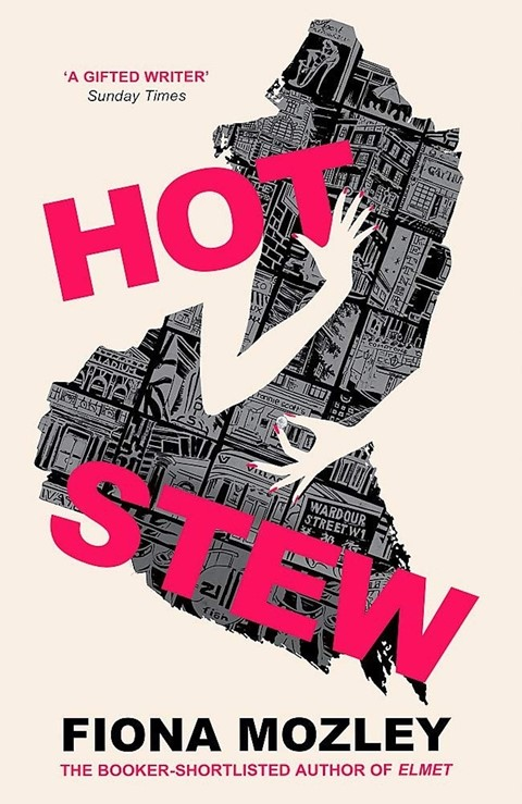 hot-stew-by-fiona-mozley-review-a-ham-fisted-satir
