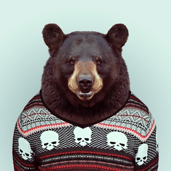 Bear from Zoo Portraits by Yago Partal