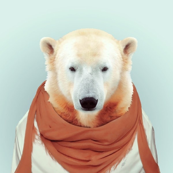Polar bear from Zoo Portraits by Yago Partal