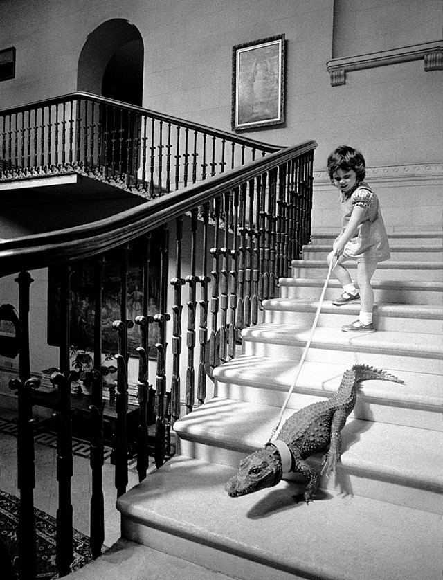 Descending a Staircase, 1976
