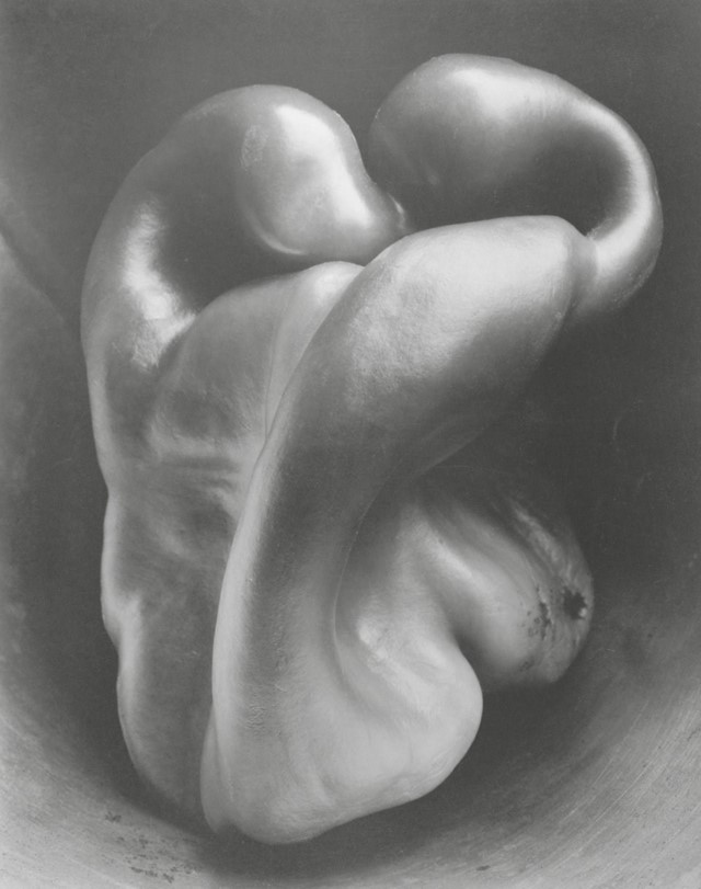 Photography by Edward Weston