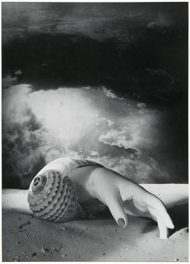 Dora Maar Untitled (Hand Shell)