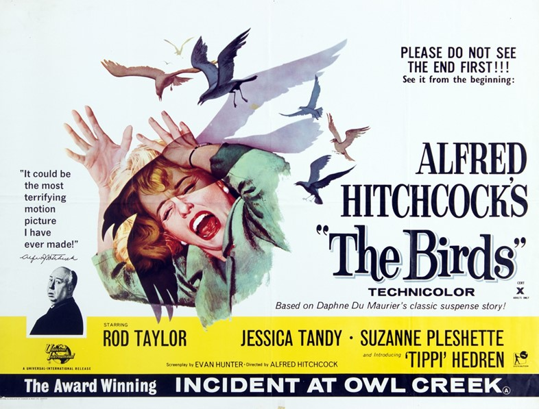 Alfred Hitchcock's 'The Birds'