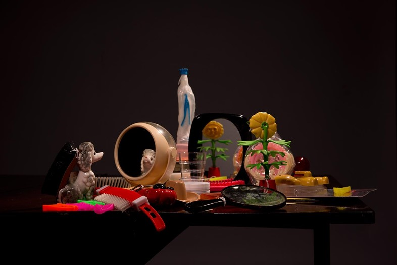 Plastic-Vanitas_Still-Life-with-Flower-and-Poodle