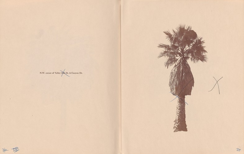 ART_RuschaE_Palm_Trees_dummy_page_26_27_001_300dpi