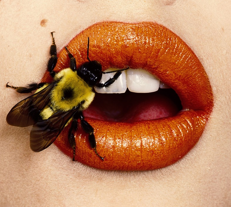 Irving Penn: Photographism