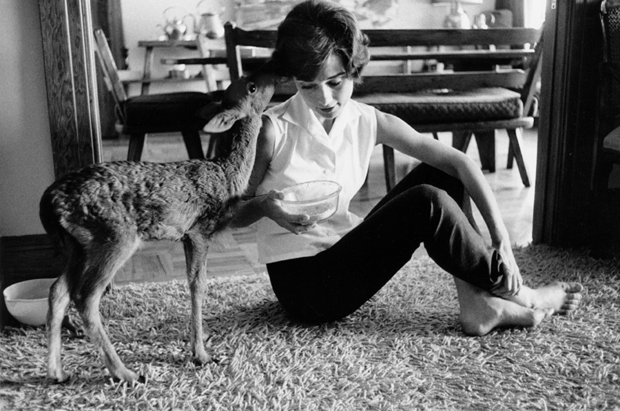 Audrey Hepburn with Ip, 1958