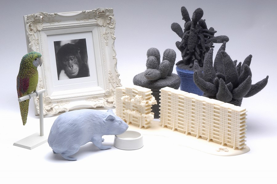 Daphne Wright, Home Ornaments, 2002-06