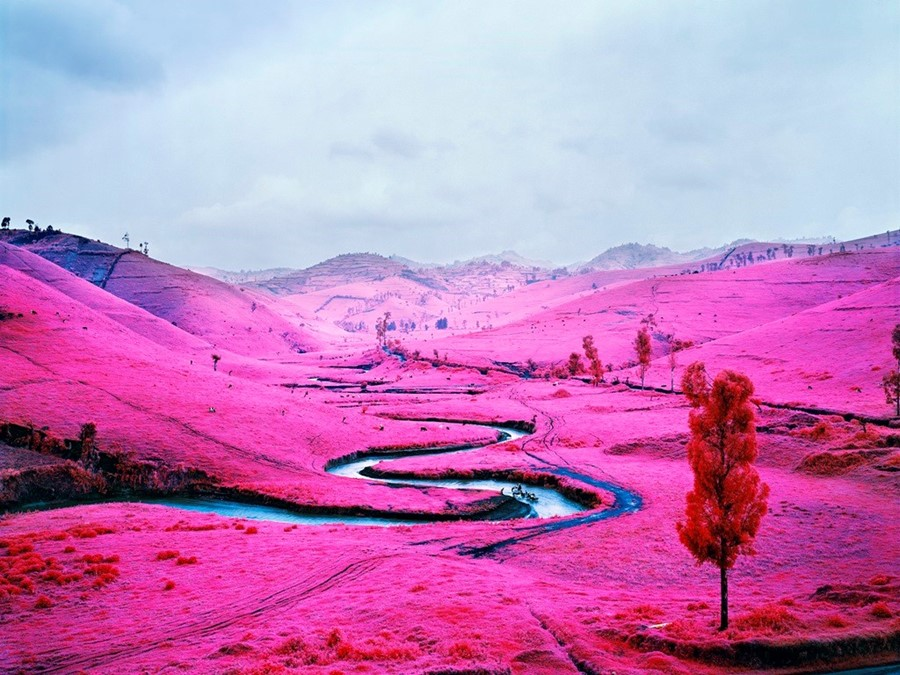 13. Richard Mosse, Platon, 2012