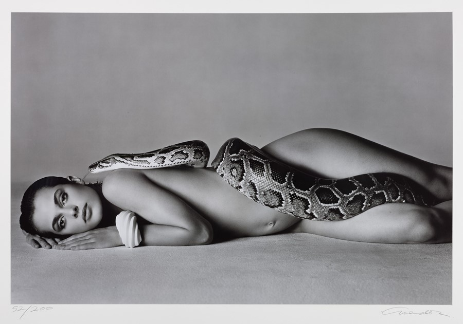Lot 18 Richard Avedon, Nastassja Kinski and the Se